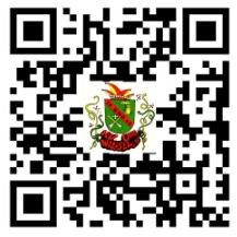 QR Webseite
